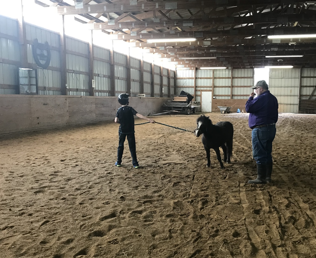 Walk-On Therapeutic Riding 3